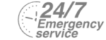 24/7 Emergency Service Pest Control in Chertsey, Ottershaw, Longcross, KT16. Call Now! 020 8166 9746