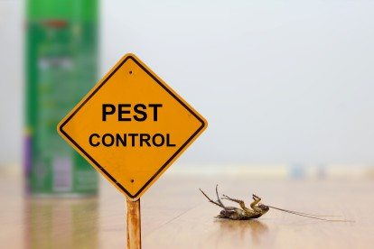 Pest Contol in Chertsey, Ottershaw, Longcross, KT16. Call Now 020 8166 9746